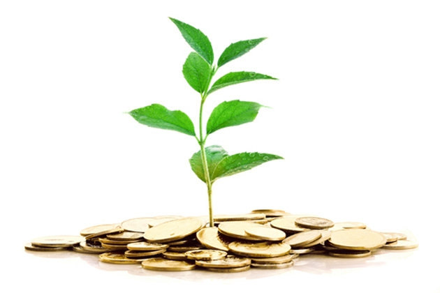 Image of a small green plant, sprouting up from a small pile of gold coins.